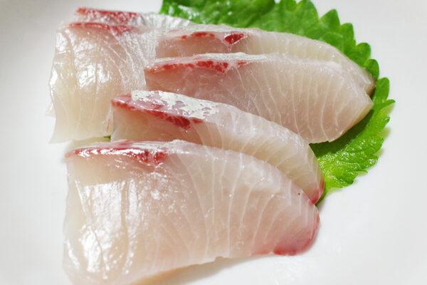 sashimi ricciola Salmone 7 fette